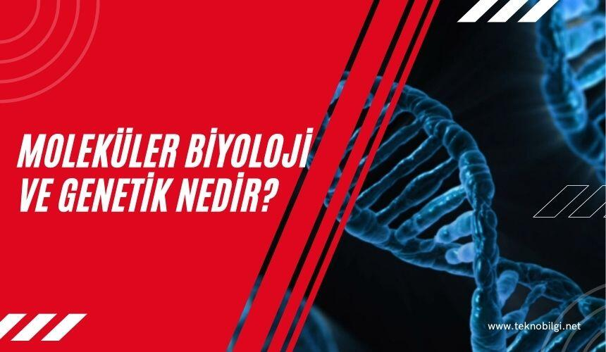 Moleküler Biyoloji ve Genetik Nedir ?