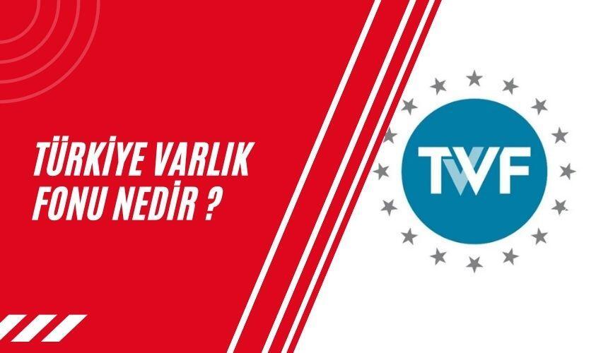 Türkiye Varlık Fonu Nedir, Türkiye Varlık Fonu Nedir ?